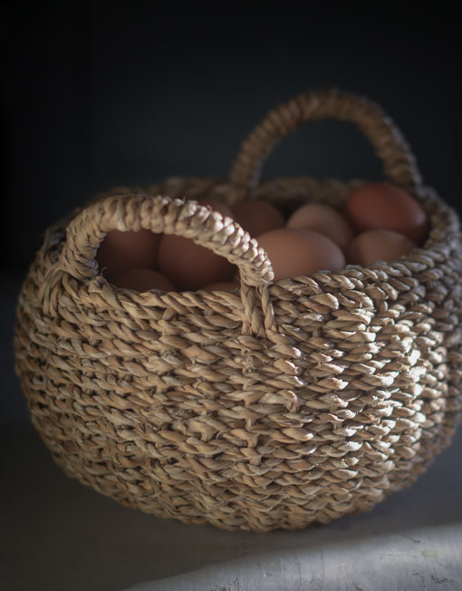egg basket walnuts farm