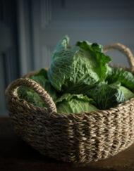 vegetable basket walnuts farm