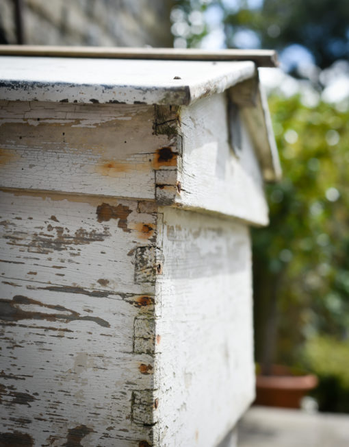 WalnutsFarms bee hive
